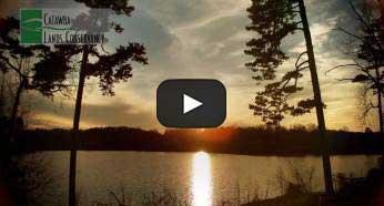 videostill_homepage4