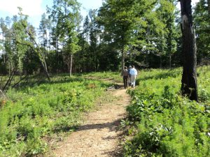 Buffalo Creek Preserve