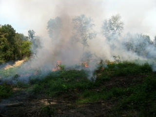 Prescribed burn conducted at Buffalo Creek Preserve in September 2012.