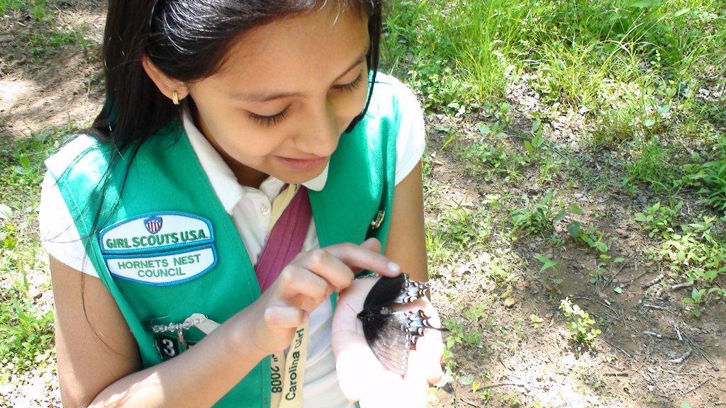 Hornet s nest girl scout council