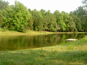 McCoy 2006 July Visit 24 Pond