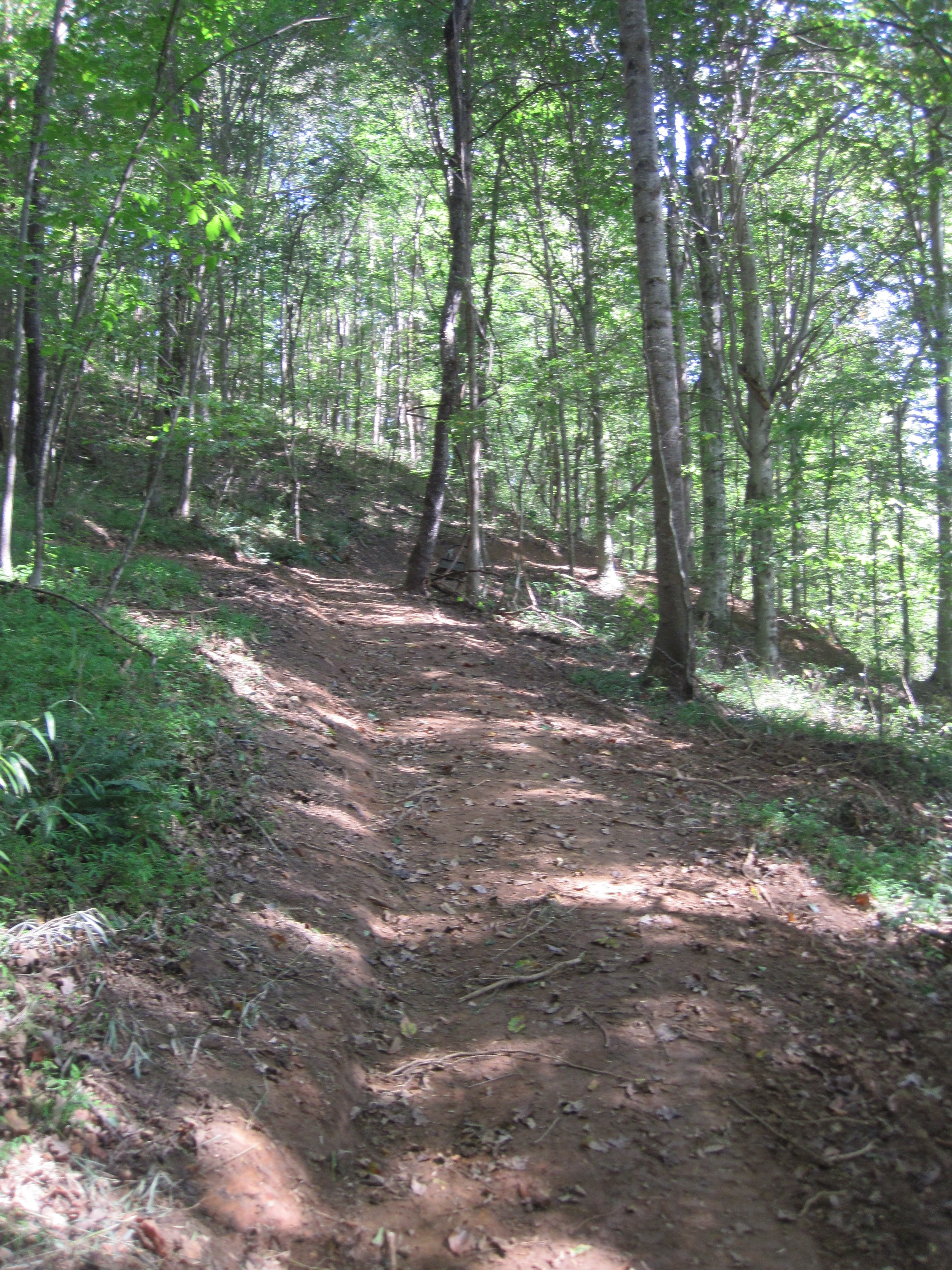 girl scouts hor s nest council trail is now open