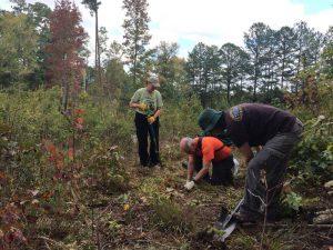 More than 40 volunteers helped plant milkweed at Buffalo Creek Preserve in Mt. Pleasant, NC.