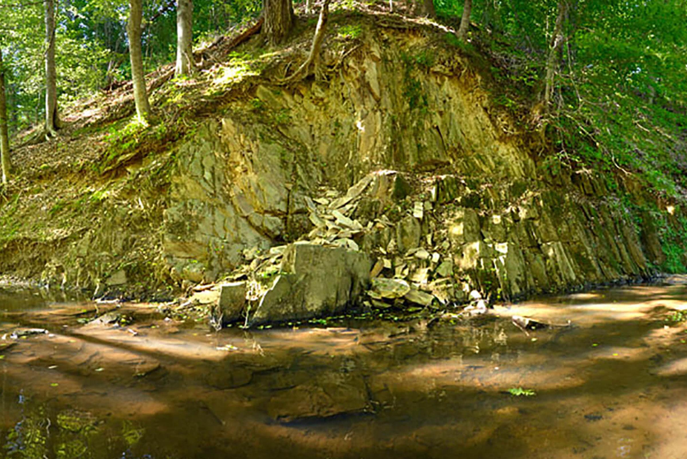 Photo: Buffalo Creek Preserve by Nancy Pierce
