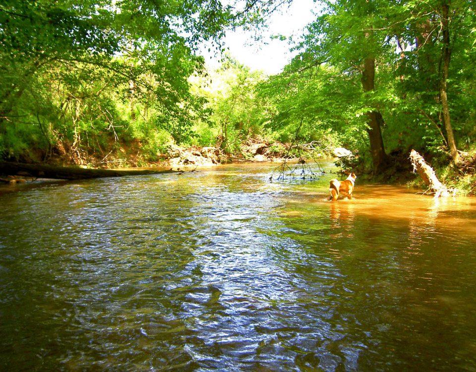 Photo: Long Creek