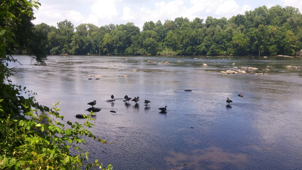 Catawba River from Riverwalk